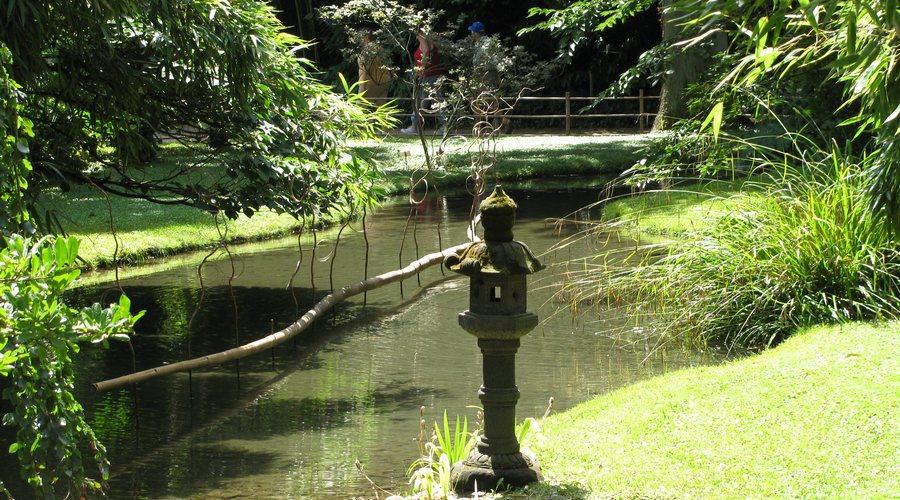 decouverte bambouseraie