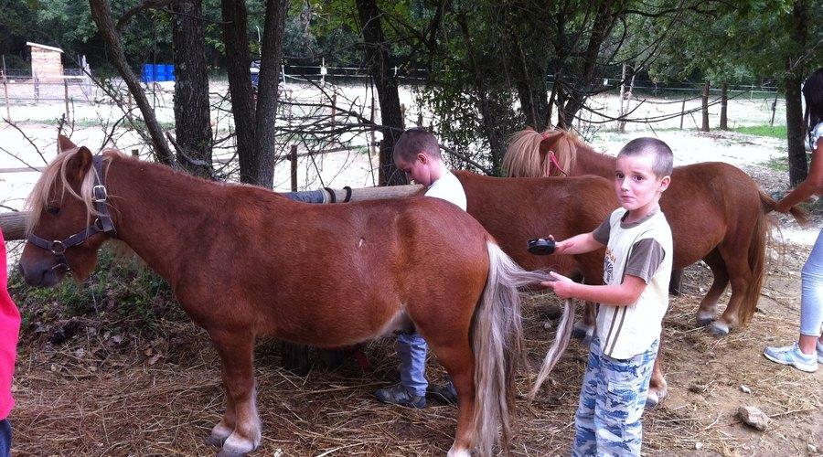 randonnees equestres village de gîtes proche uzes